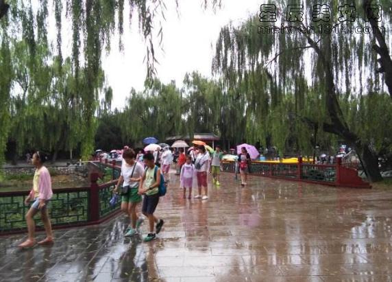 那一天,雨一直在下