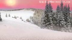 关于雪的爱情唯美句子10条