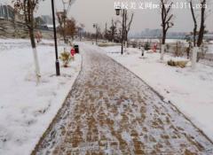 2018年的第一场雪作文400字
