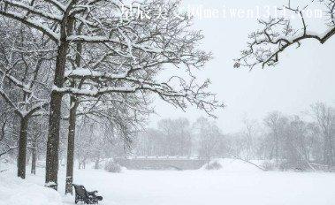 那一年,瑞雪降南国