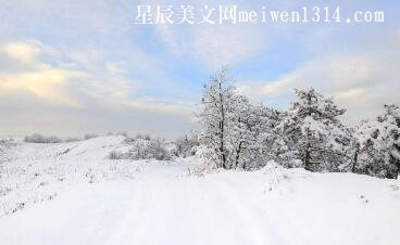 冬天的失望