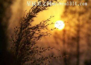 岁暮回望新年第一天