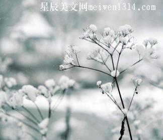 那些流逝的冬季
