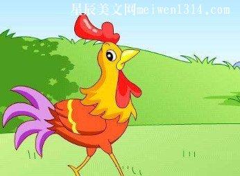 小公鸡250字作文