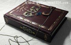 一本有魔法的书600字作文