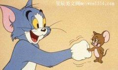 猫和老鼠作文800字