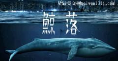 鲸落是什么意思网络用语?