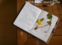 写一篇日记100字【10篇】